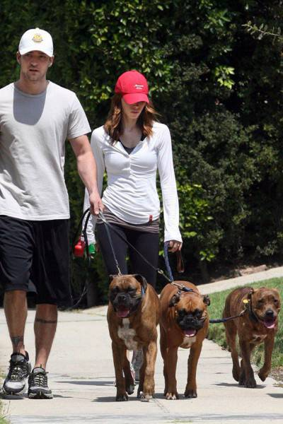 Justin Timberlake! JT has 3 dogs  Buckley, Brennan and Billy