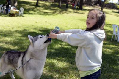 A girl plays with a Husky dog during an international dog show in Guatemala City on January 25, 2015. AFP PHOTO / Johan ORDONEZ        (Photo credit should read JOHAN ORDONEZ/AFP/Getty Images)