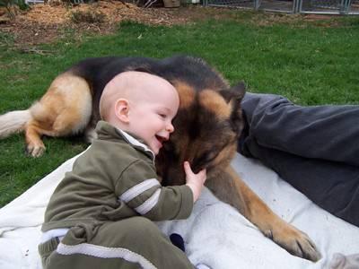 bambini cani7