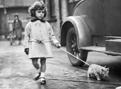 2nd December 1931:  A young exhibitor arrives with her kitten on a lead at the National Cat Club show at Crystal Palace, London.  (Photo by Fox Photos/Getty Images)