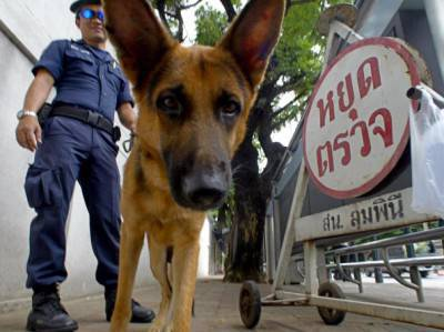 A Thai policeman with a sniffer dog chec