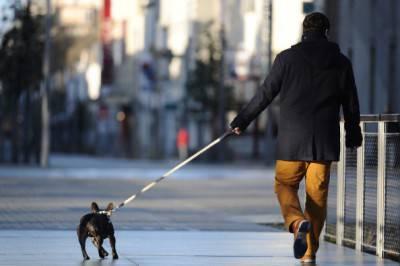 patentino detenzione cani