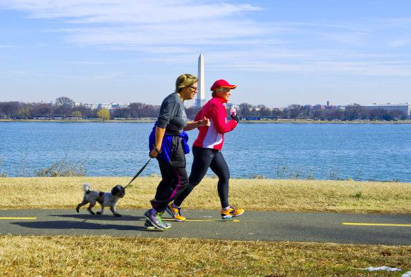 Runners with their dog jog the Mount Vernon Trail, March 8, 2014 near Alexandria, Virginia. Spring-like temperatures arrived in the Washington, DC area soaring into the mid-60sF (17C), giving much needed relief to snow weary residents. AFP PHOTO / Karen BLEIER (Photo credit should read KAREN BLEIER/AFP/Getty Images)