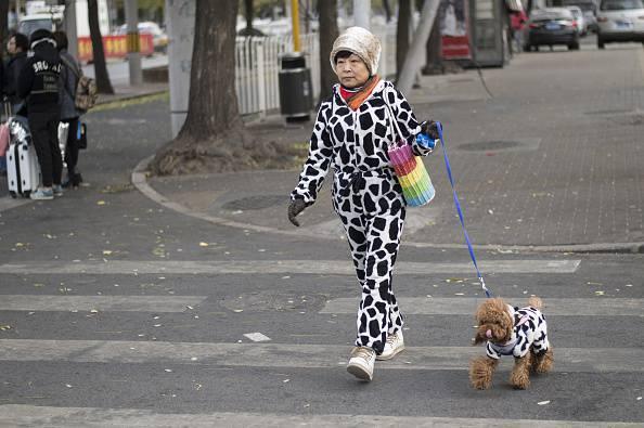 Stereotitpi dei proprietari cani al parco