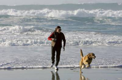 PACIFIC GROVE, CA - FEBRUARY 07:  A woman runs with her dog along the beach February 7, 2006 in Pacific Grove, California. The U.S. saw its warmest January on record with a national average of 39.5 degrees Fahrenheit, beating the old record for January temperatures of 37.3 degrees set in 1953. Due to the unseasonably warm weather, Americans have been able to save on heating bills just as oil prices have hit record highs. Temperatures in the Monterey Bay are expected to in the 70's with clear skies for the next five days.  (Photo by Justin Sullivan/Getty Images)