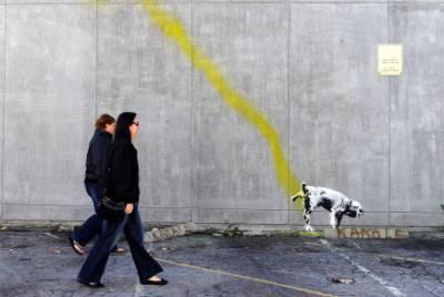 obbligo pulire pipì cani