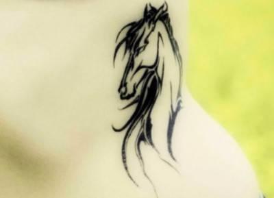 cavalli tattoo4