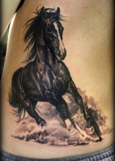cavalli tattoo6