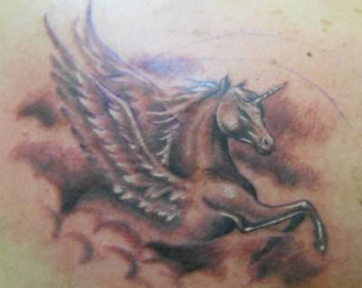 cavalli tattoo9a