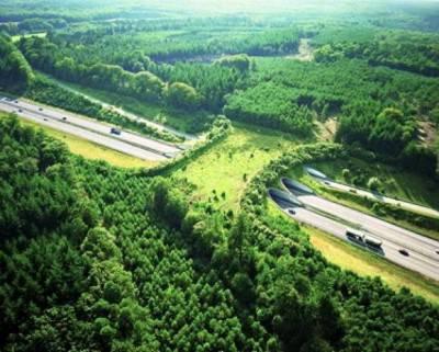 Ecoduct De Woeste Hoeve sopra l'autostrada A50, Paesi Bassi