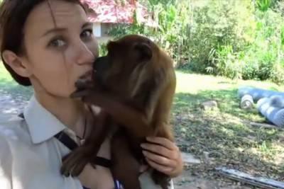 bacio scimmia