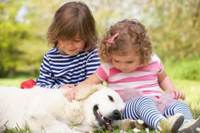 bambini cane