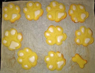 biscotti cane