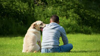 legame cane uomo