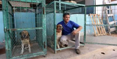 libia salva cani