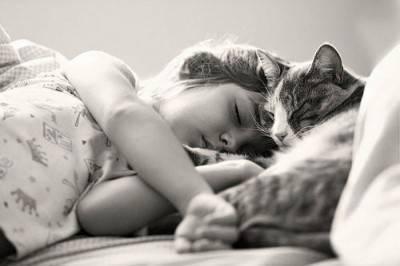 bambini gatto