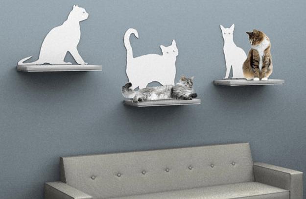 Arriva la app per creare una casa a misura di gatto for Creare una casa online
