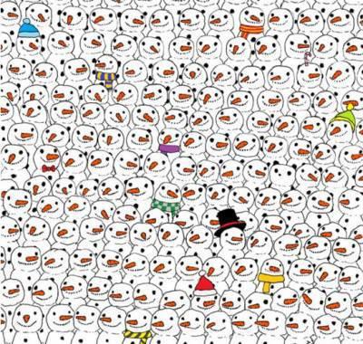 panda nscosto
