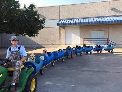 2015 treno per cani