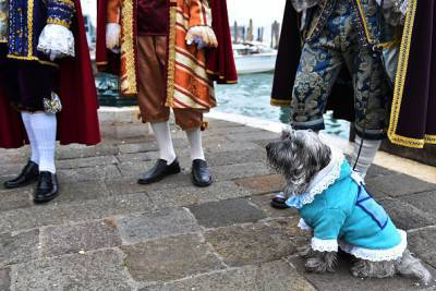 @Carnevale di Venezia- Getty images