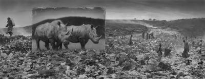 Wasteland with Rhinos & Residents 2015 @Nick Brandt