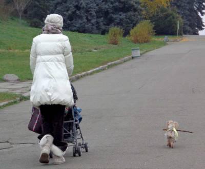 donna cane 3