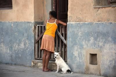 donna cane