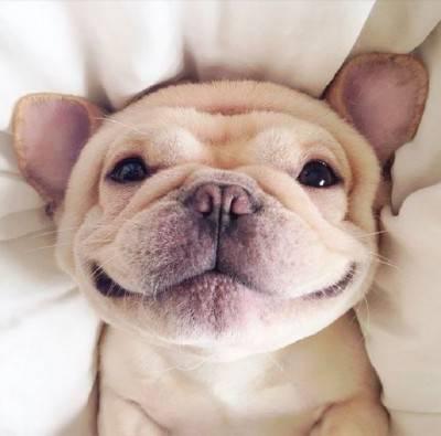sorriso9a