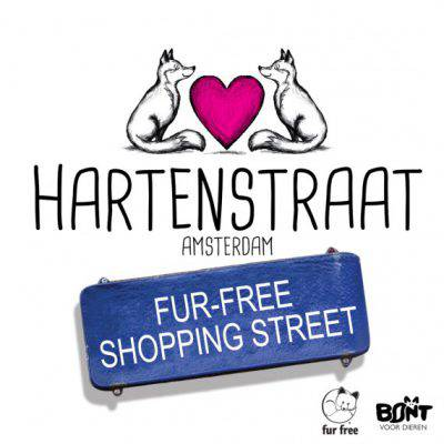 Hartenstraat_FB-570x570