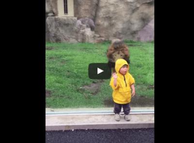 leone zoo