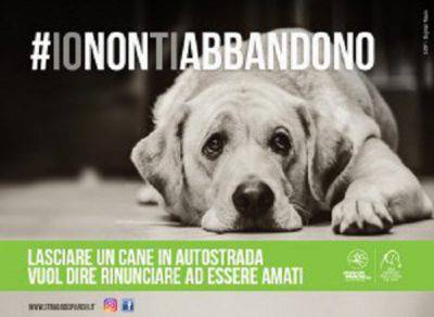 Manifesto-IONONTIABBANDONO-SDP-LNDC-300x219
