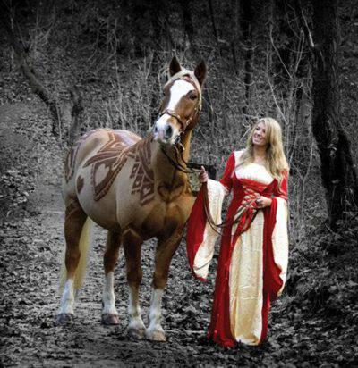 cavalli decorati