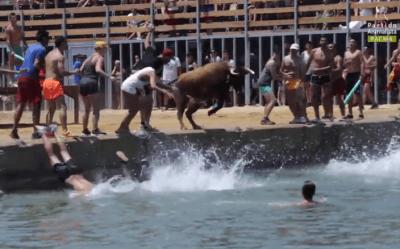 toro mare