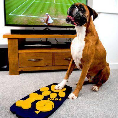 wagg-telecomando-cani
