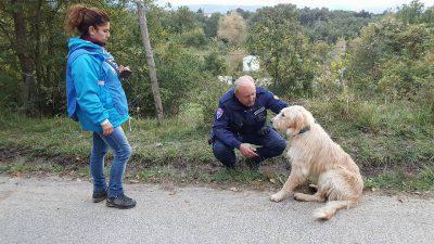 amatrice-cane-trascinato