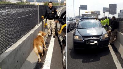 @Twitter/Secretaría de Seguridad Pública de la Ciudad de México