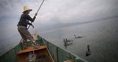 pesca-con-i-cormorani-olycom-835