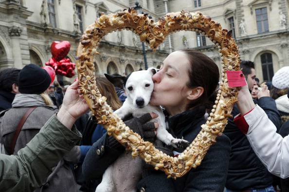 San Valentino, cucciolo ©Getty