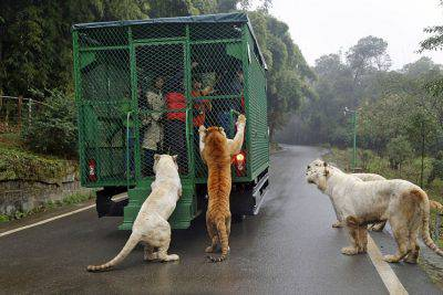 Lehe Ledu Wildlife Zoo