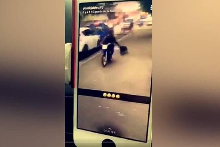 Trascina il cane con lo scooter sgomento e indignazione for Cane zampe posteriori cedono