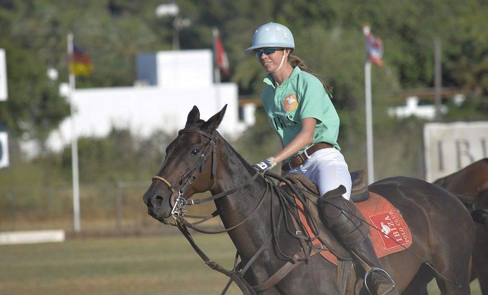 Cavalli sport equestri