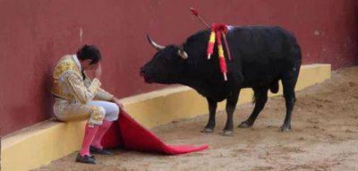 torero pentito