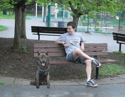 tecnologia accessori cani