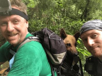 salvataggio cani