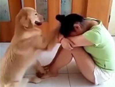 sesso con cane