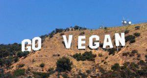 star vegane