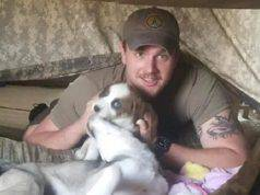 militare usa cane
