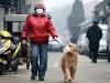 inquinamento cani