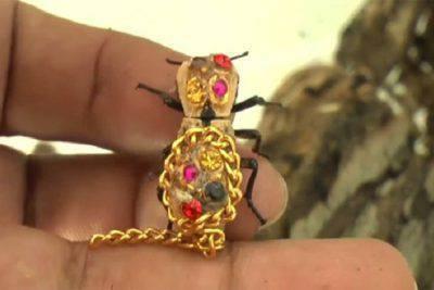 scarafaggi vivi gioielli