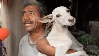 Salva il suo cane dalle macerie